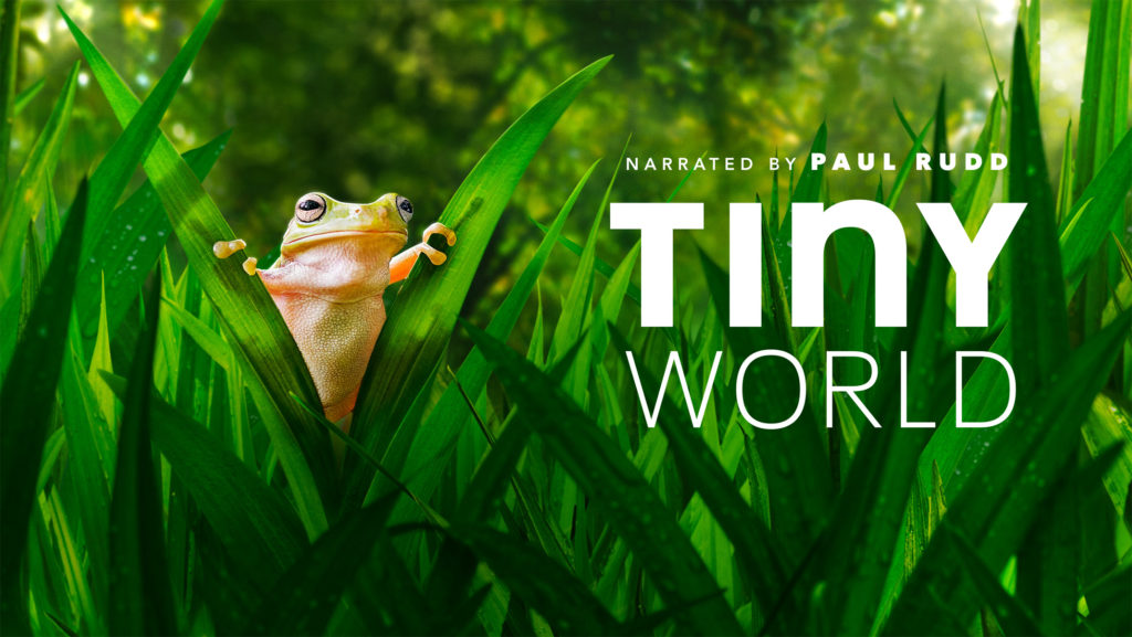 seriál Maličký svět Tiny World series